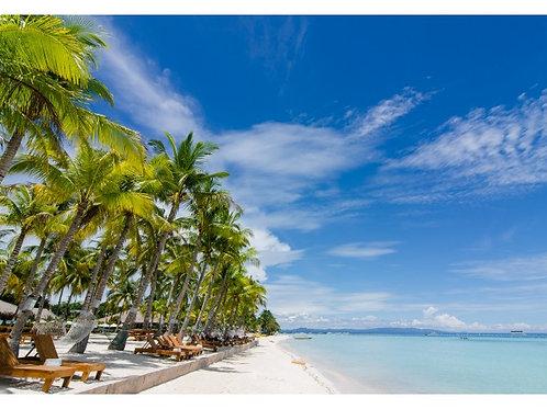 Bohol Beach Club (1 Night)