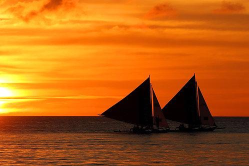 Calypso Beach & Dive Resort (1 Night)