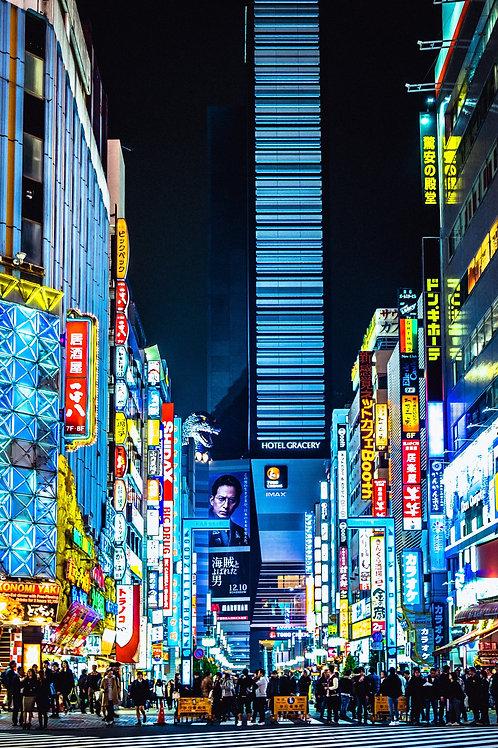 Tokyo 4D3N Budget Package