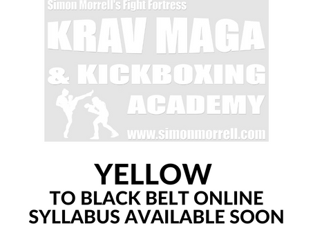 Yellow to Black Belt Syllabus On Digital Film