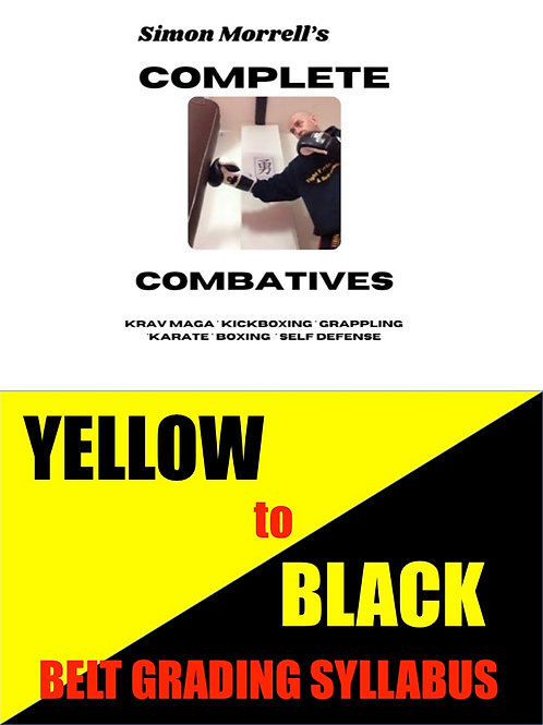 Yellow to Black Belt Grading Syllabus