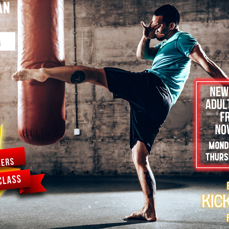 November Adults Kickboxing Offer