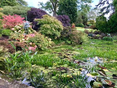 September in the Garden