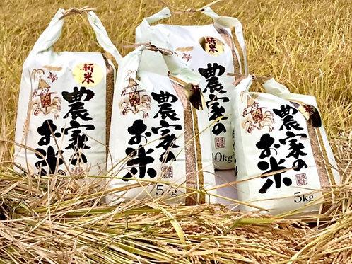 <狸穴ファーム発>数量限定!つくばみらい産の新米コシヒカリ 10kg(白米と玄米が選べます!)