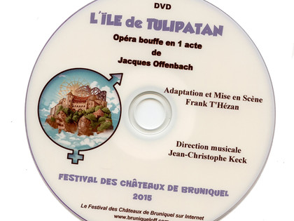 DVD simple - 2015 L'Île de Tulipatan
