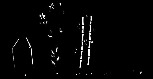 plantpulp-marerials-pic copy 2.png