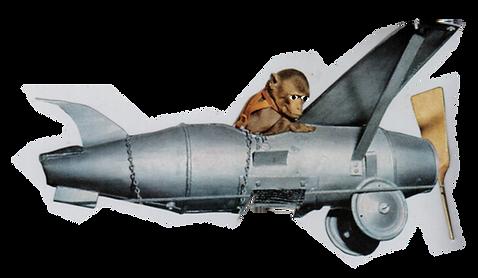 IAMNOTPAPER monkey plane