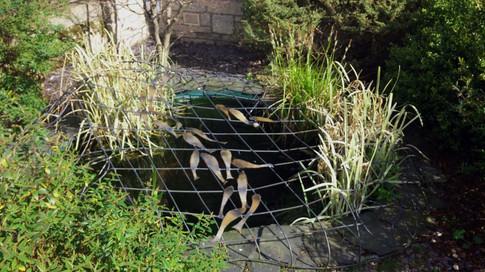 Keep The Grandchildren Safe pond cover