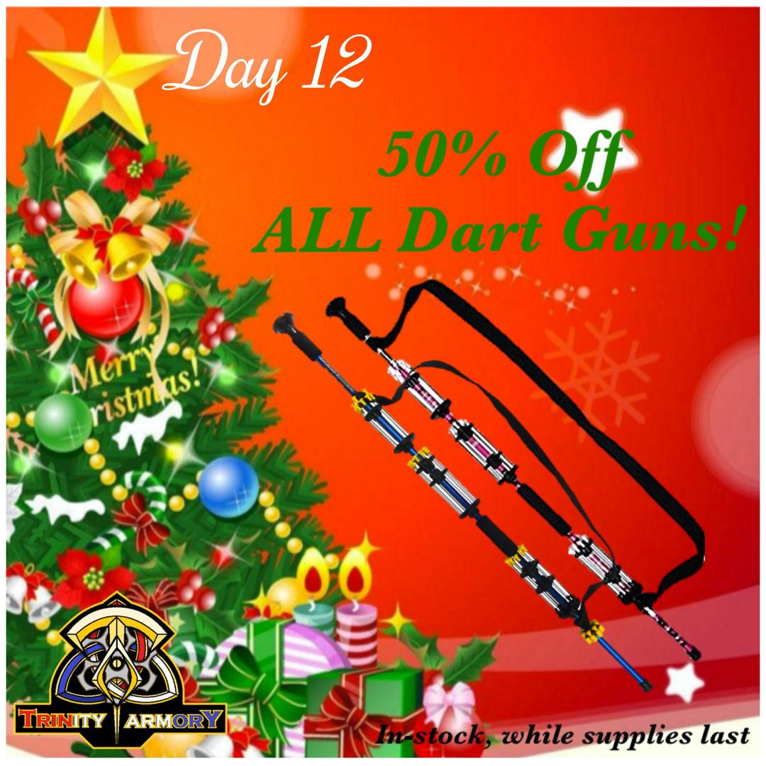 Day 12 Dart Guns_edited.jpg