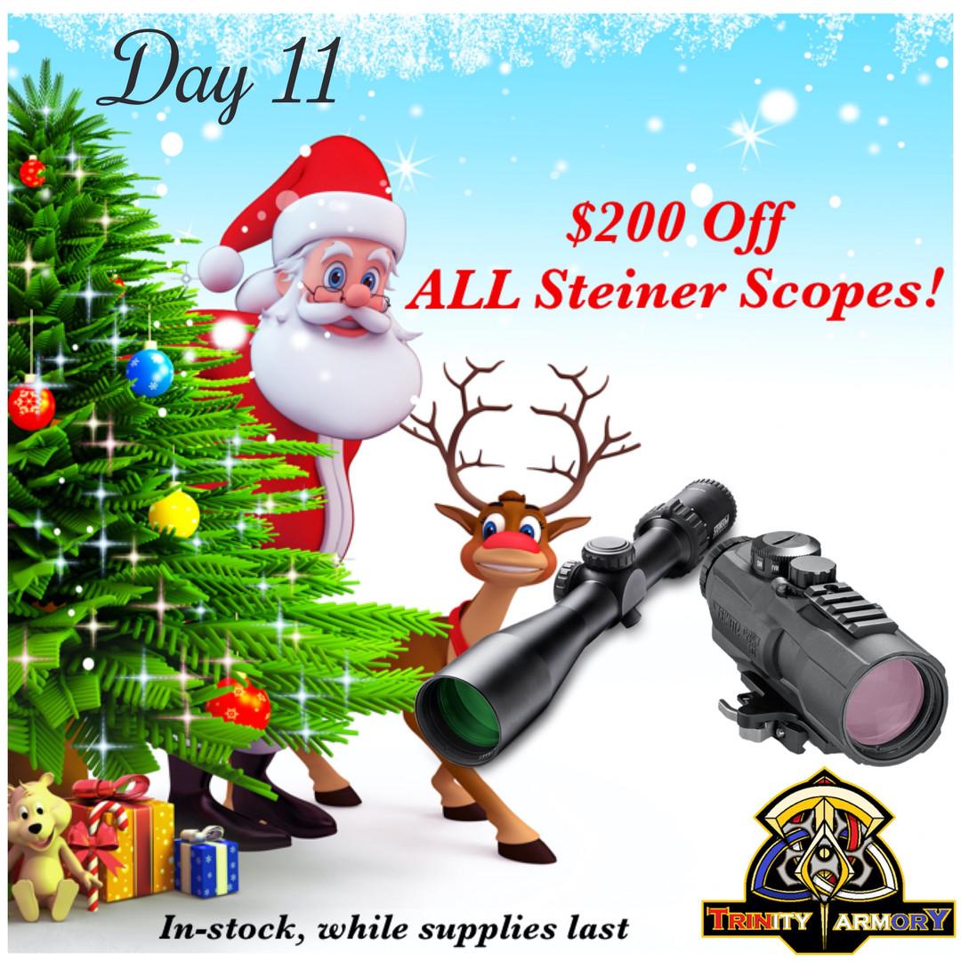Day 11 Steiner Scopes_edited.jpg