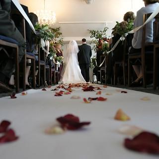 bride-ceremony-chairs-794254.jpg