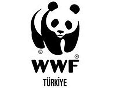 logo (10).jpeg