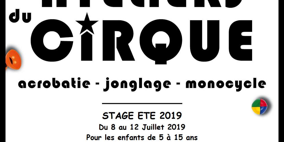 Les ateliers du cirque - stage ETE 2019