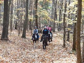 City Ranch Turkey Trot at Patapsco State Park Maryland Horseback Riding