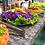 Thumbnail: Cardápio 2 - Macanudo | 40 Convidados | Buffet Completo com Churrasco