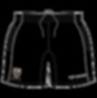 Gym_Shorts_-_Custom-01_grande.jpg