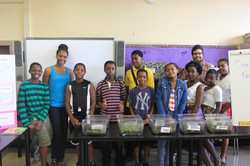 Summer Bridges STEAM Program