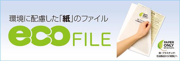 ecofileb.jpg