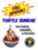 Turtle Sundae Special.jpg