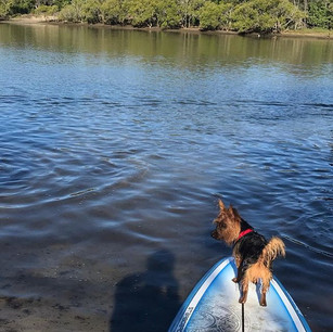 Paddling at Pottsville with the family.j