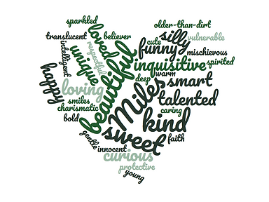 Words used to describe Miles Hall who was killed by Walnut Creek Police in officer involved shooting.