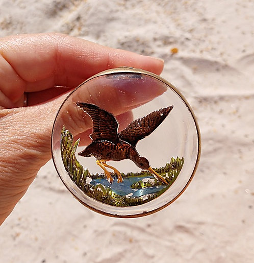 Early 1900's Waterfowl Glass Dome Dress Clip, Reverse Intaglio Painting