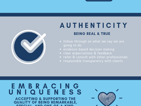 Our Values & Why they Matter