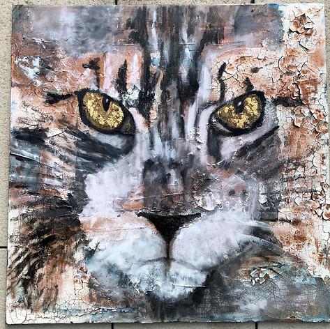 Serie Lieblingstier - Katze