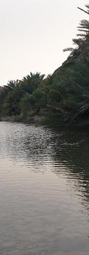 Khatwa Wadi Jazirah.jpg