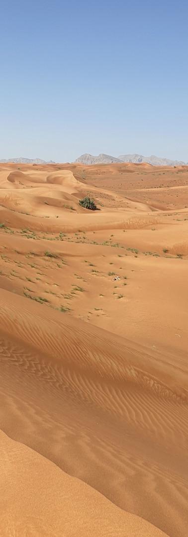 Nuway Desert 01.jpg