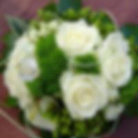 322291_198333620258519_599199046_o.jpg__