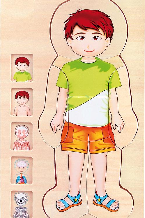 jouet montessori, puzzle à étages, découvrir le corps humain, anatomie garçon, jouets en bois, jouets de léa