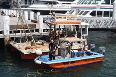 Bowline Marine Divers