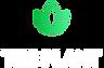 event_plant.webp
