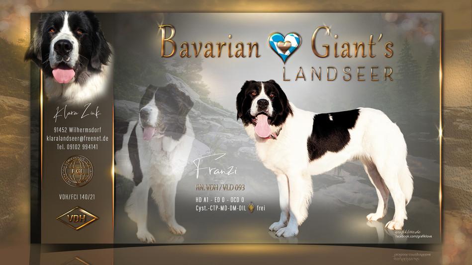 bavarian-giants-final-collage.jpg