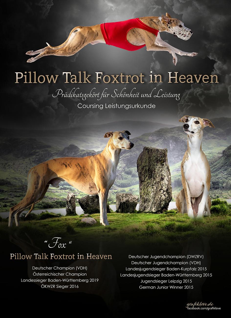 Foxtrott-in-Heaven-klein.jpg