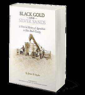 SNYDER_Black Gold Silver Sands 3D cover.