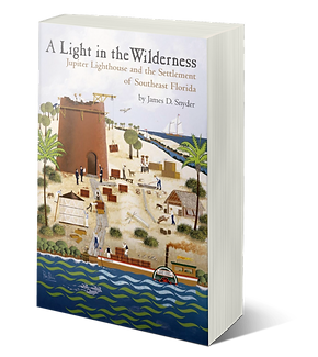 SNYDER_Light in Wilderness 3D cover.png