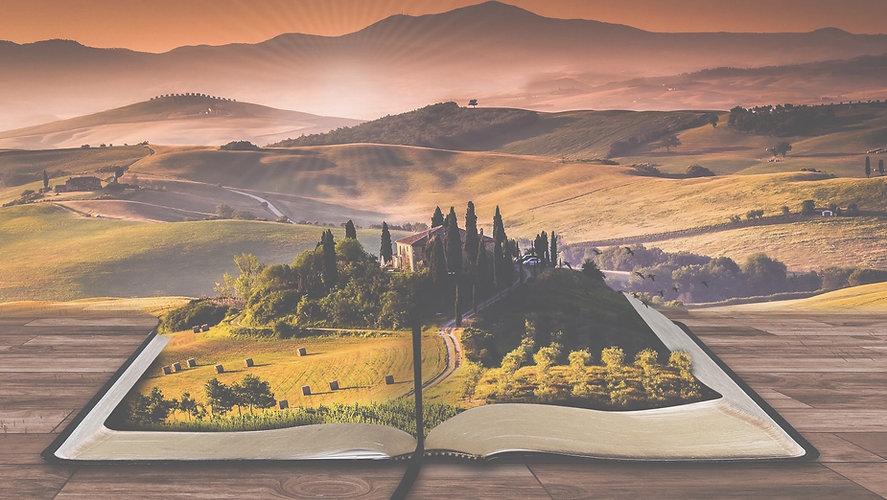 book-low-contrast-e1484242017323.jpg