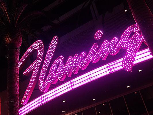 Spotlight Film Productions Flamingo Neon Image