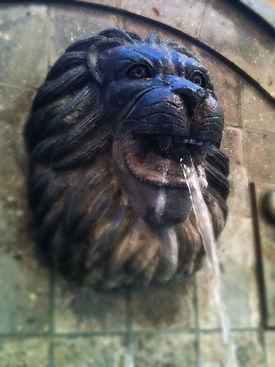 Spotlight Film Productions Lion Head Image