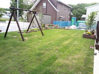 2014-06-18 東海村・M様邸のお庭が完成
