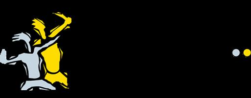 sanden_logo_transparent.png