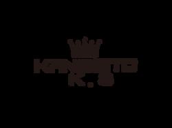 kangsito logo small