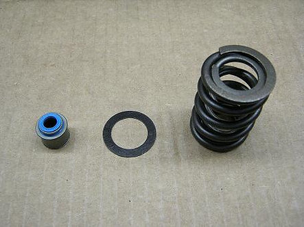 Double Valve Spring Kit - Ford 4.0L OHC V6 / Cosworth Heads
