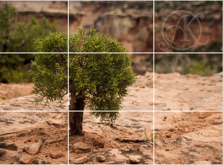 Composition: 7 Things To Keep In Mind When Photographing On The Go