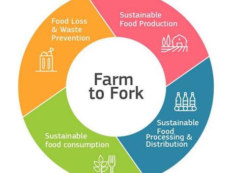 """UE. La Commissione Europea pubblica la Strategia """"Farm to Fork"""""""