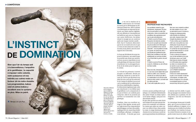 Domination.jpg