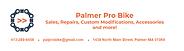 Palmer Pro Bike 2.png