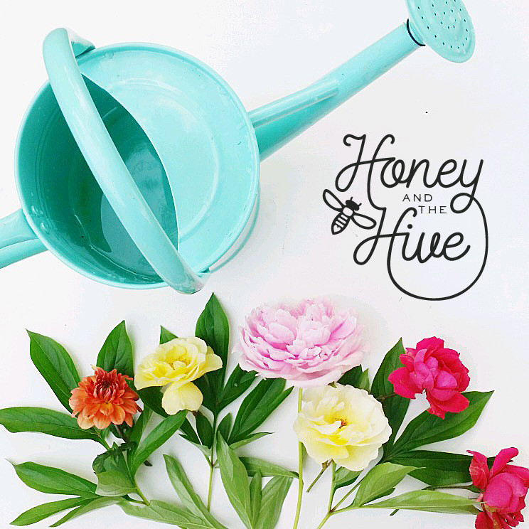 Honey and the Hive Logo